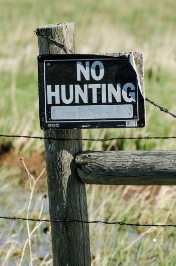 no-hunting-sign-1110491