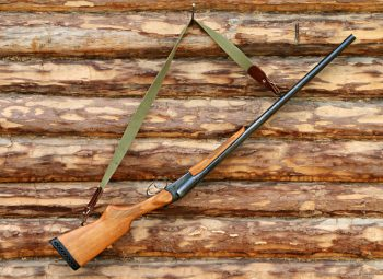 shotgun-1503130